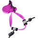 Nathan Race Number Belt Floro Fuchsia